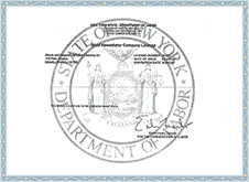 We are New York State Licensed Mold Remediator Company!