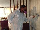 A member of our expert mold removal team hard at work.