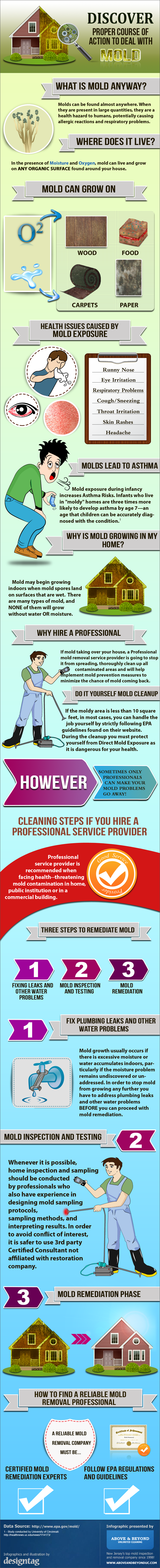 How to deal with household mold - Infographic