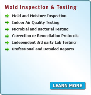 Mold Inspection and Testing services in New Jersey