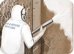 Mold Remediation Bordentown, Burlington County New Jersey 08505
