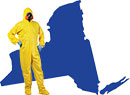 Certified, licensed, insured and bonded mold, water and basement company in Noyack, Suffolk County New York 11963